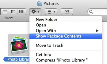 Contents of iPhoto Library. Icons and databases.
