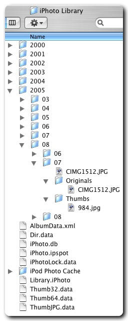 Inside the iPhoto Library folder. Icons and databases.